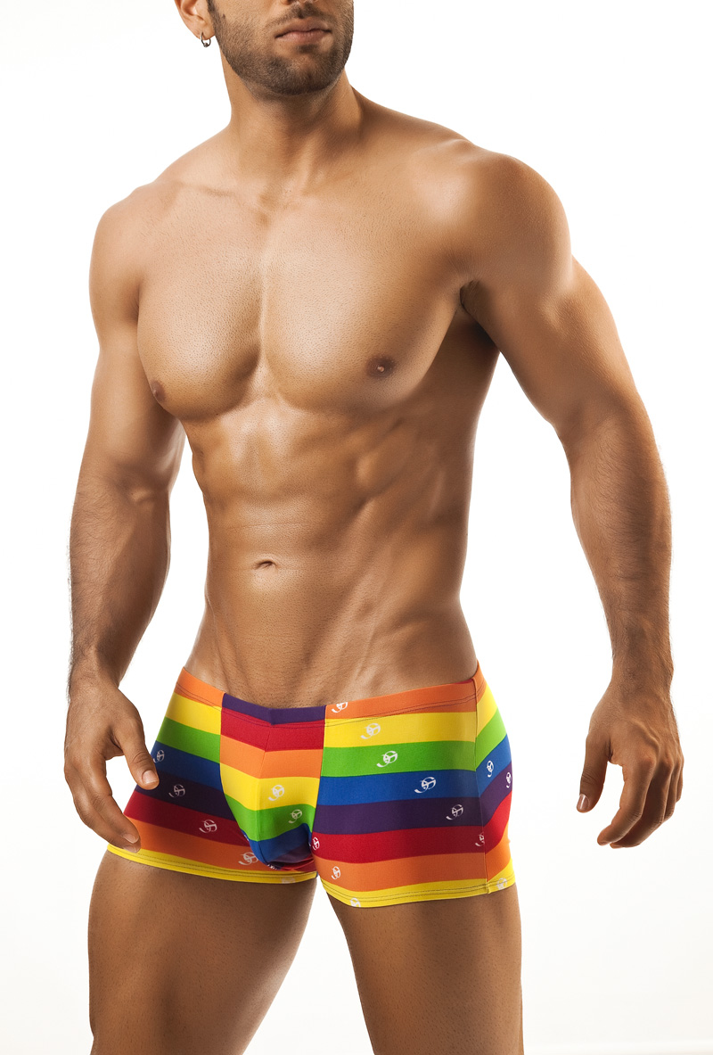 Rainbow boxer briefs 5608 Edmonton