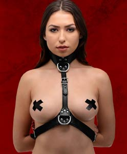 Fetishwear Belts and Harnesses
